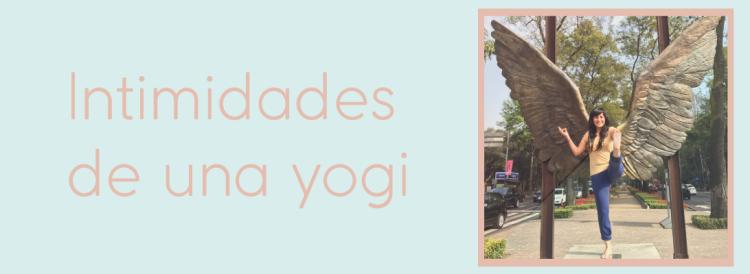 yogi-confessions
